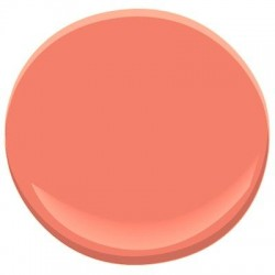 Gel couleur WALLY orange clair