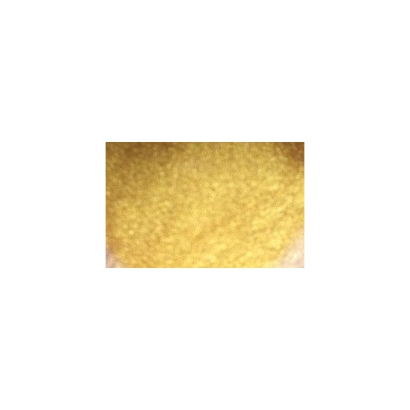 Gel couleur GOLD TANYA