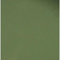 Gel couleur Cactus TANYA Ephémère